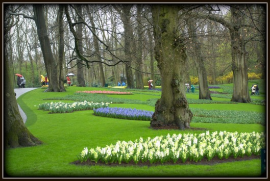 Keukenhof on a Wet Day