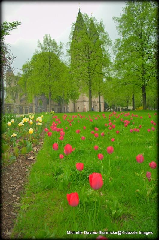 Tulips at a church near the German Corner Koblenz
