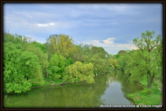 Greenery seen from the bridge in Regensburg, Germany.