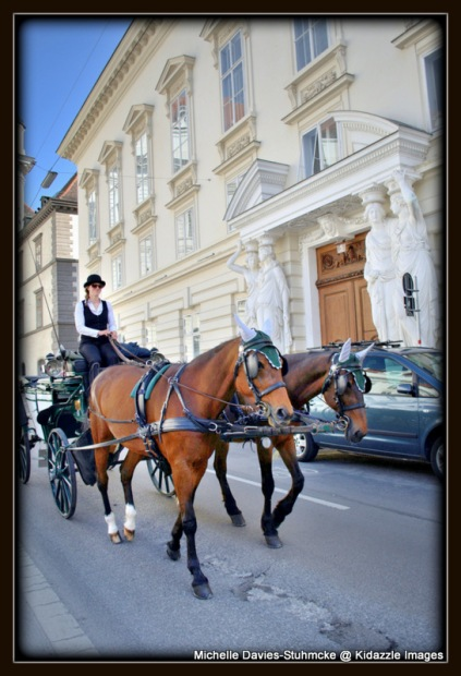 More of Vienna's beautiful horses.