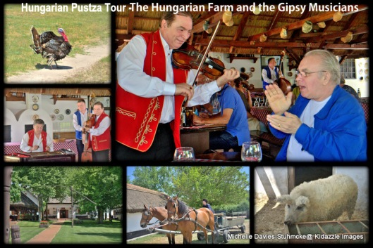 The entertaining Gypsy musicians that played for us during our traditional Hungarian three course lunch.