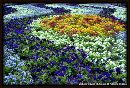 Spring Planting, Budapest, Hungary.